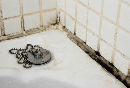 Black mold forming around a bathtub.
