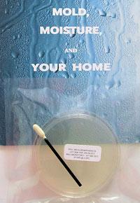 Home Mold Laboratory Viable Mold Test Kit