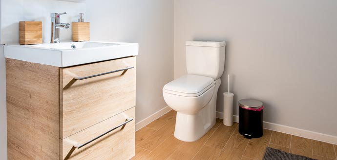 How to remove black toilet mold