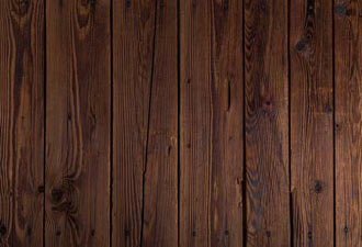 Mold on wood floors