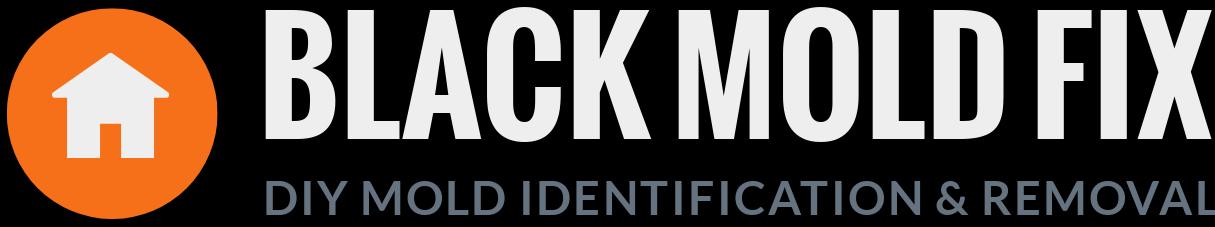 Mold Test Kit - blackmoldfix com