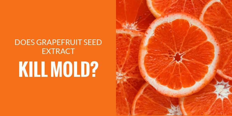 Does grapefruit seed extract kill mold