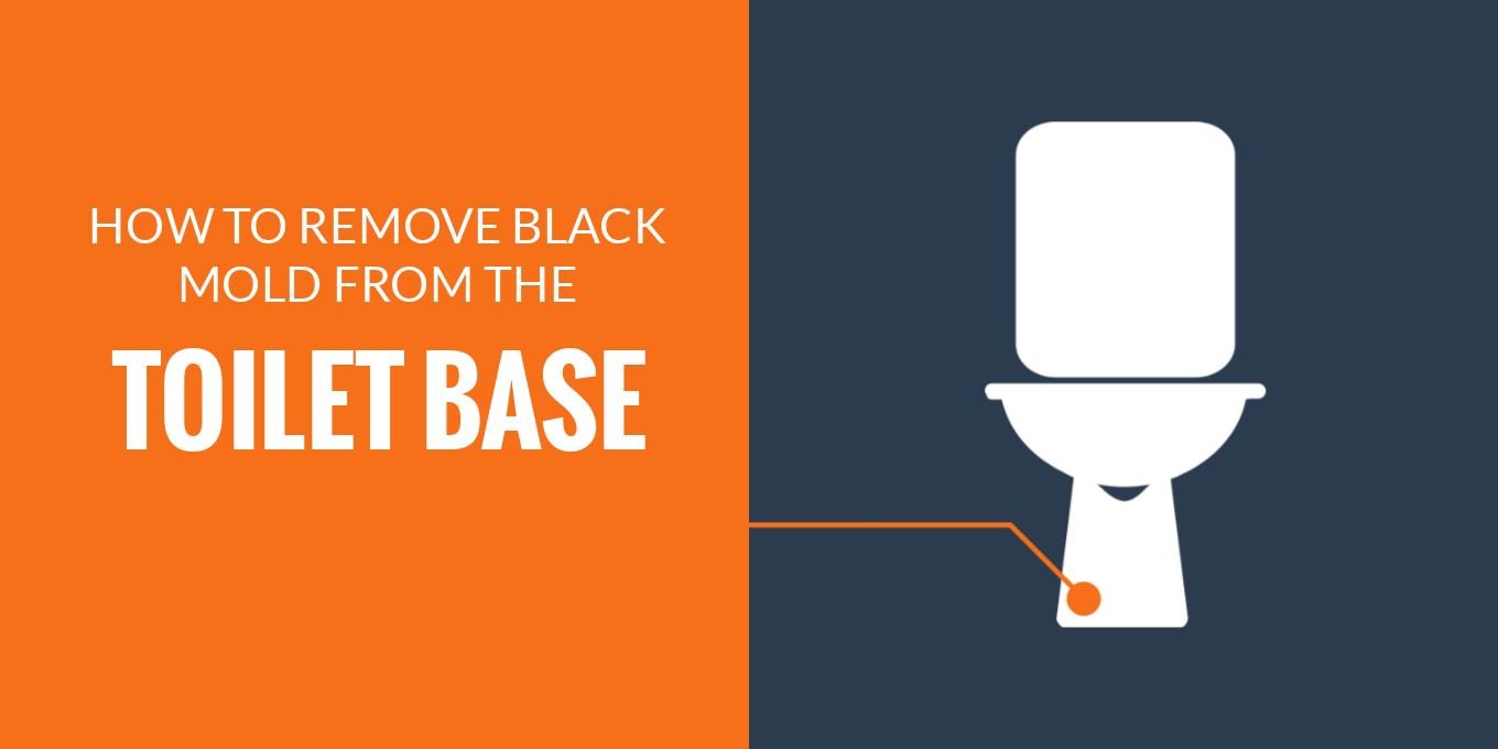 Remove mold from toilet base
