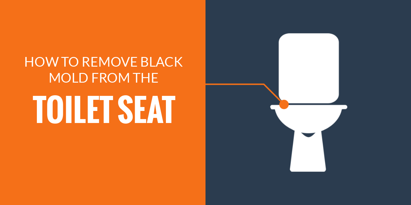 Remove black mold from toilet seat
