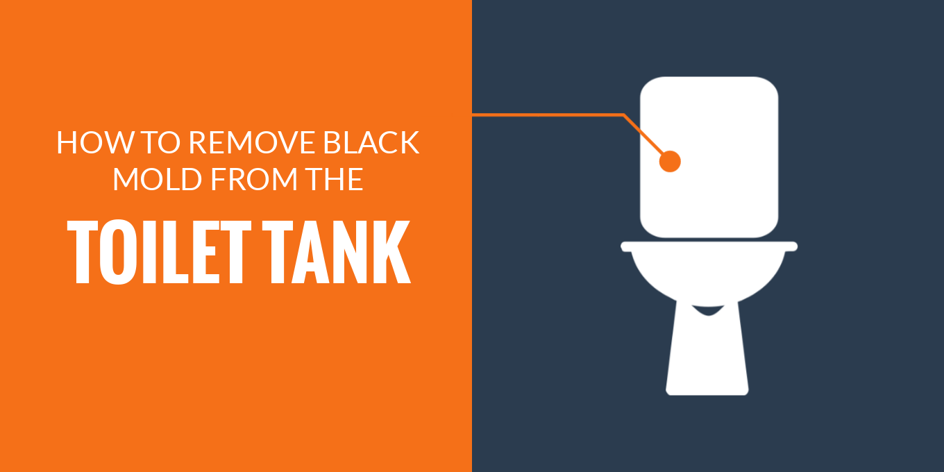 Remove black mold from toilet tank