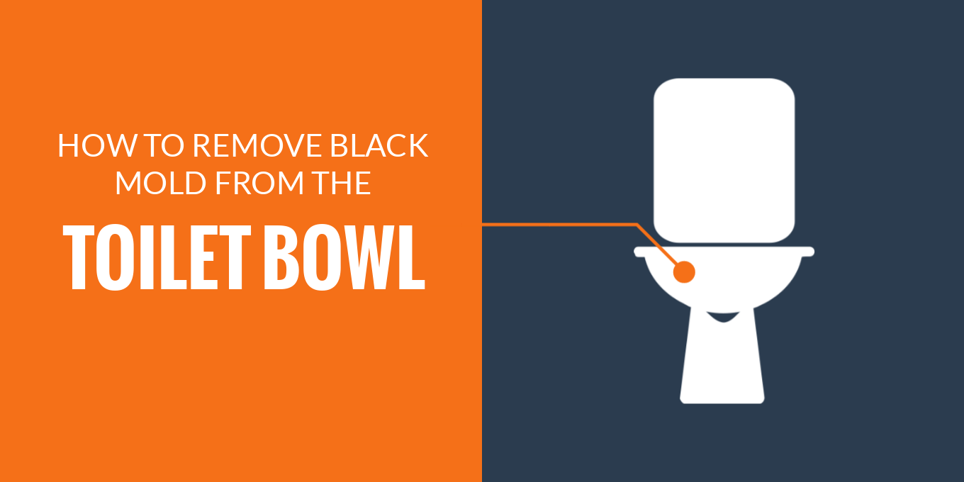 Remove black mold from toilet bowl