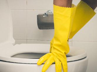 How To Remove Black Toilet Mold Blackmoldfix Com