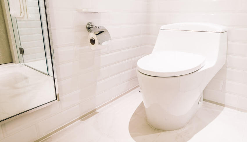 How to remove black toilet mold.