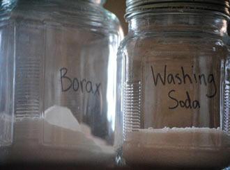 Does borax kill mold