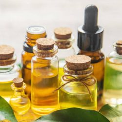 Does tea tree oil kill mold?