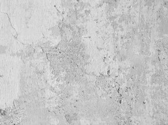 How to get rid of mold on concrete.