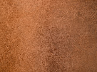 How to get rid of mold on leather.