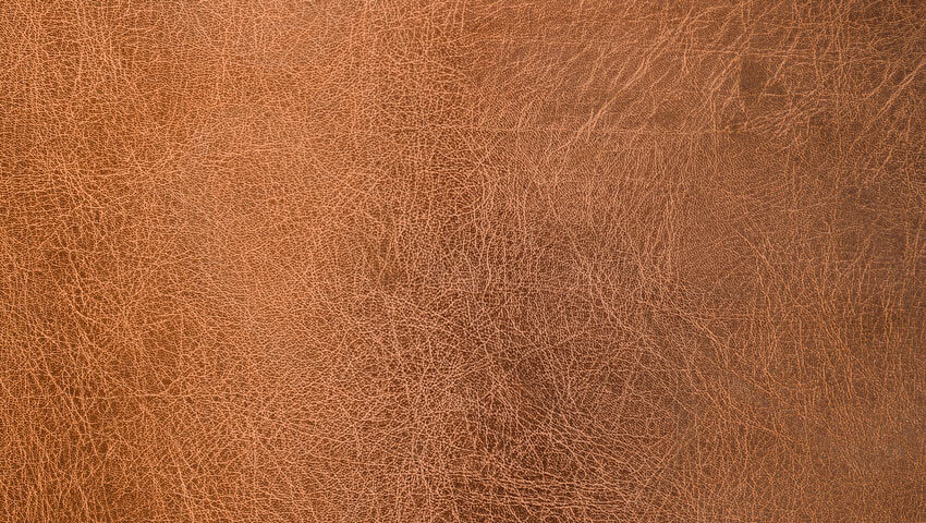 How to remove mold from leather.